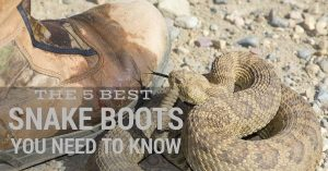 The 5 Best Snake Proof Boots And What You Need To Know About Them