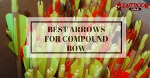 How To Choose Best Arrows For Compound Bow?