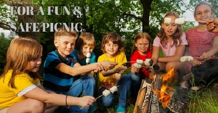 How to Have a Fun & Safe Picnic