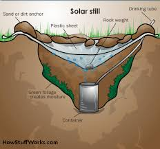Survival Tips How Do You Find Safe Drinking Water On The Hunting Adventure