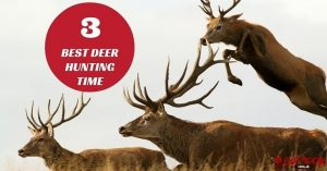 3 Best Deer Hunting Times You Need To Know