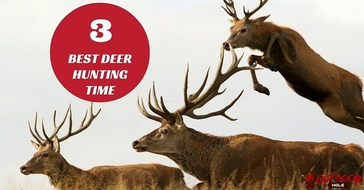 best deer hunting times