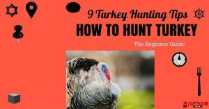 [Infographic] Turkey Hunting 101 Tips For Beginners: How To Hunt Turkey?