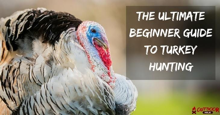 The Ultimate Beginner's Guide To Turkey Hunting – How To Hunt In The Spring?