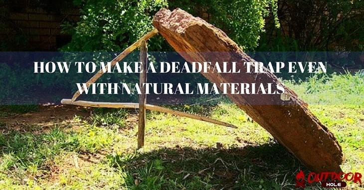 How To Make A Deadfall Trap Even With Natural Materials?
