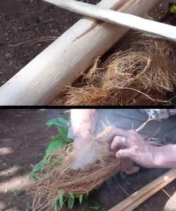 how-to-start-a-fire-with-sticks-06