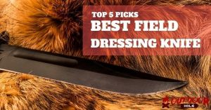 Best Field Dressing Knife | Our Buying Guide