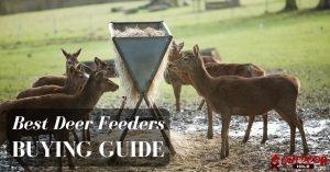 Best Deer Feeders | Our Buying Guide