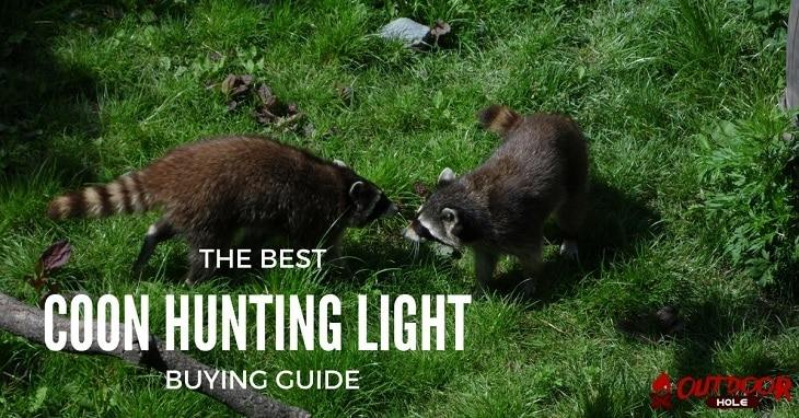 best coon hunting light